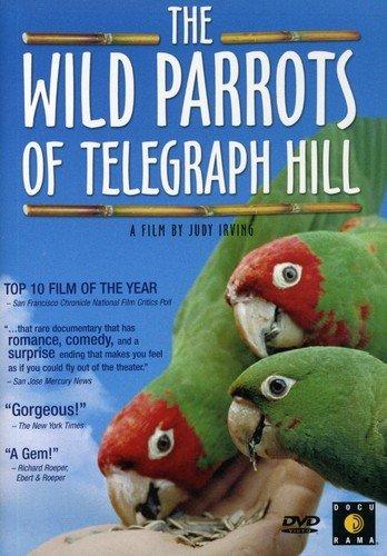 เรื่อง THE WILD PARROTS OF TELEGRAPH HILL (2005)